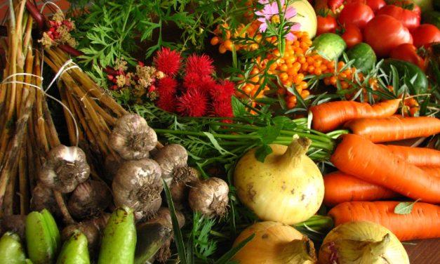 Jak i ile gotować warzywa